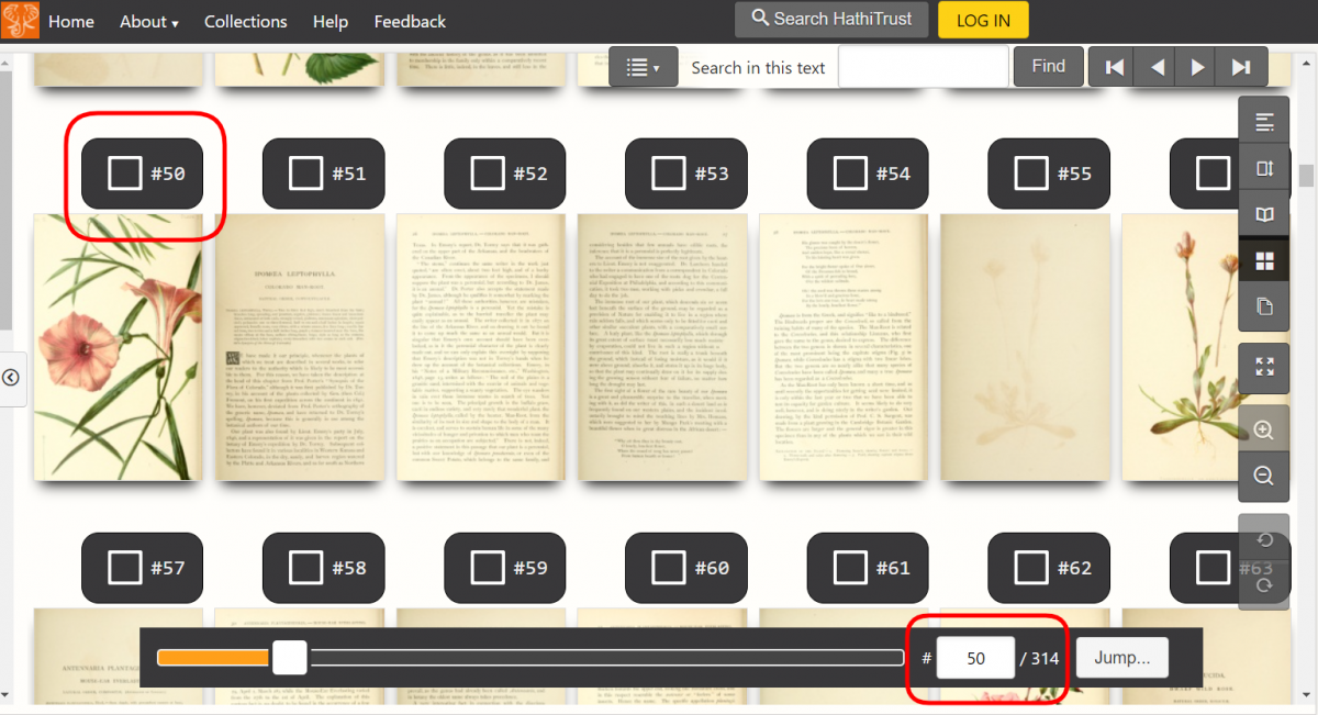 A screenshot of thumbnail mode displaying the pages of a book about plants. Red squares are drawn around the page scan number above a page and in the Jump to Page Number feature.