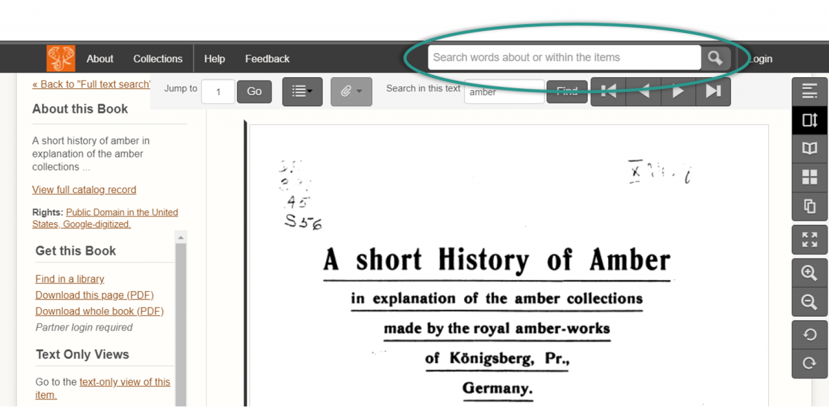 "Screenshot of a book ""A Short History of Amber"" in the previous site. A search field inviting users to ""Search words about or within the items"" is embedded into the header menu."